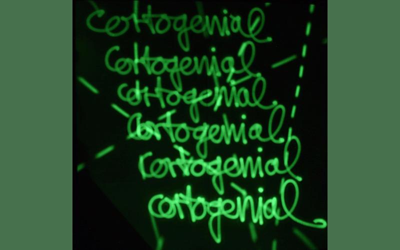 PERSISTENCIA-RETINIANA-3